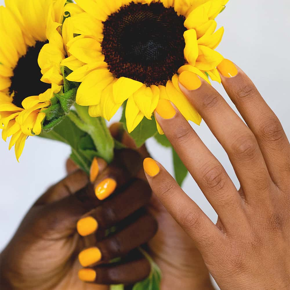 dark and medium skin tone hands holding sunflowers and wearing yellow nail polish by sienna