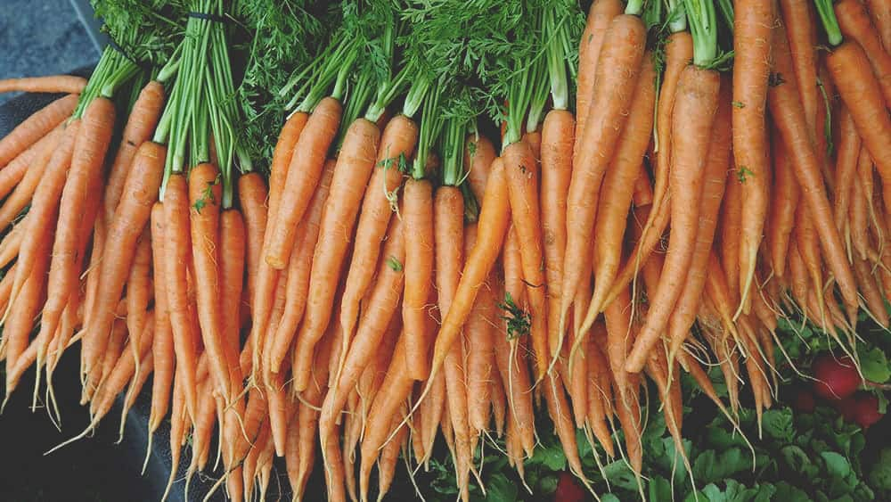 carrots at the farmer's market in byron bay